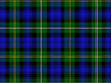 The Campbell clan tartan.